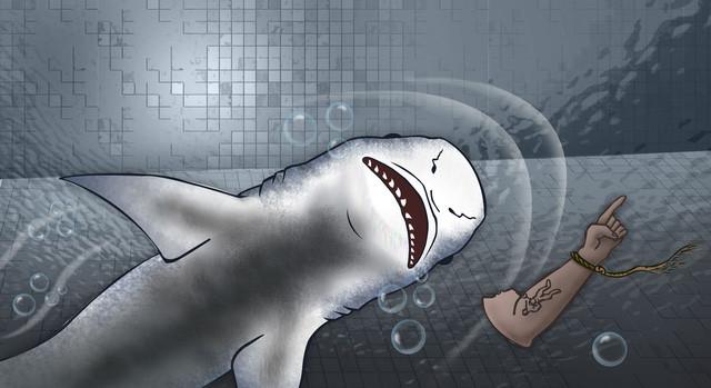 Tay cá mập - Vụ án bí ẩn ly kỳ bậc nhất nước Úc, đến giờ vẫn chưa có lời giải - Ảnh 2.