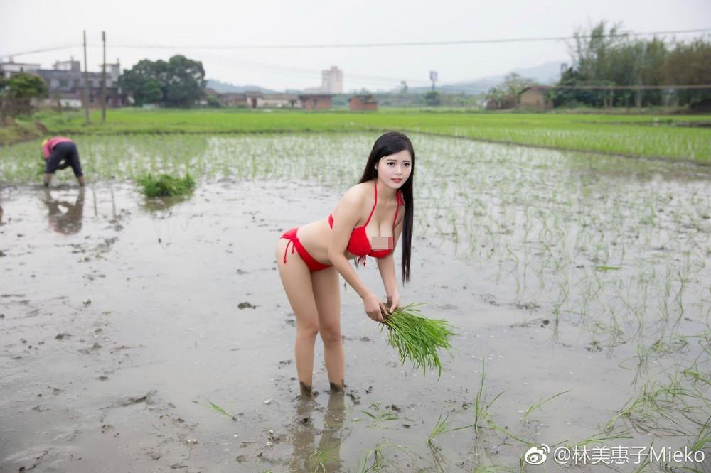 Nữ sinh hot nhất Biên Hòa mặc gợi cảm đi gặt lúa bị nhận xét