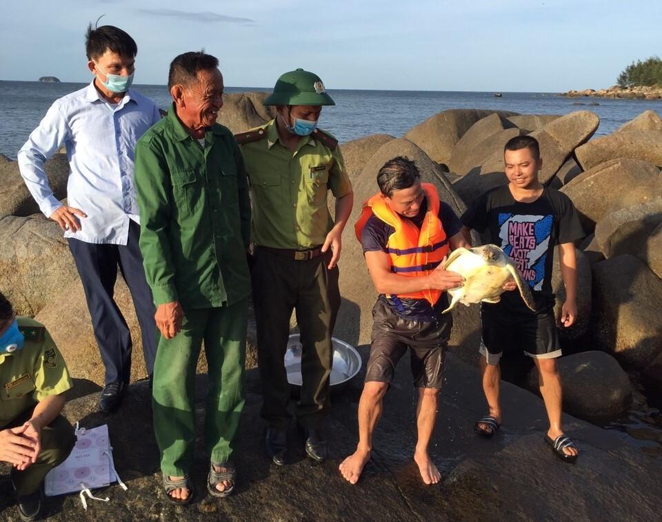Người đàn ông ở Hà Tĩnh bắt được vích biển quý hiếm - 2