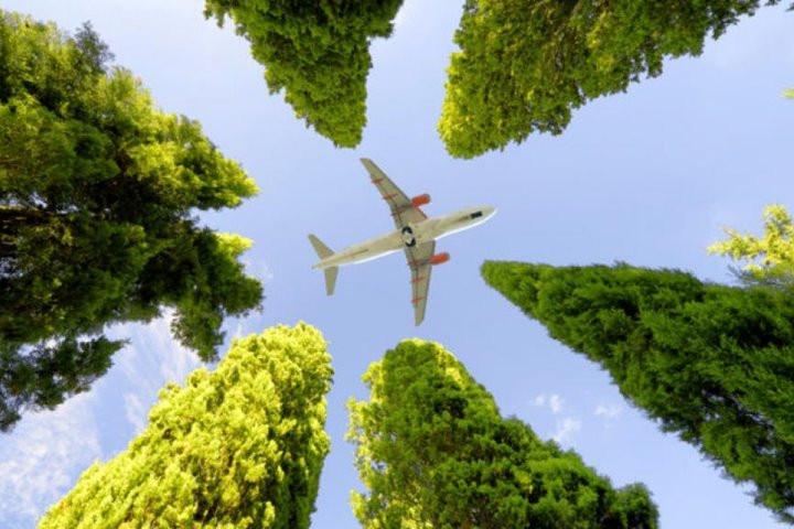 Mọi người ủng hộ du lịch bền vững cho đến khi nó gây ra sự bất tiện - 4