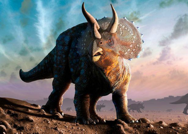 Khủng long đã dần tuyệt chủng từ trước khi thiên thạch rơi xuống Trái đất? - Ảnh 2.