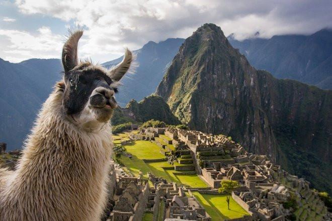 """Khám phá đường mòn dẫn đến """"thành phố bị mất của người Inca"""" - Ảnh 6."""