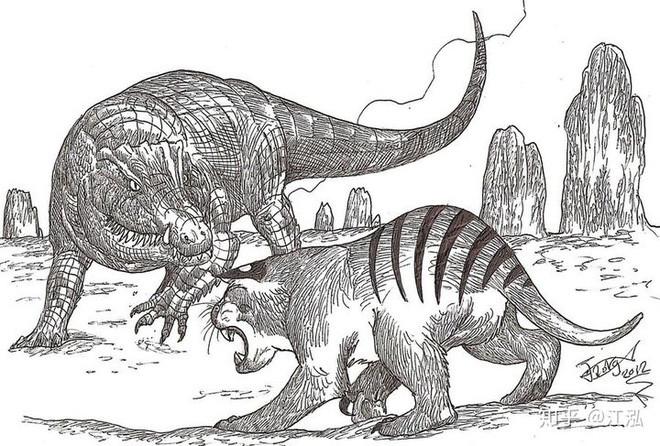 Phát hiện loài cá sấu cổ đại tại Australia có khả năng chạy nhanh trên cạn cách đây 40.000 năm - Ảnh 8.