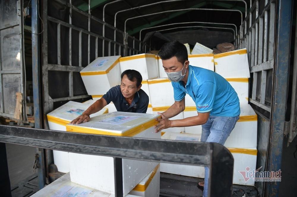 TP.HCM tiếp nhận ba tấn cá 'nghĩa tình' đầu tiên của người Quảng Bình gửi tặng