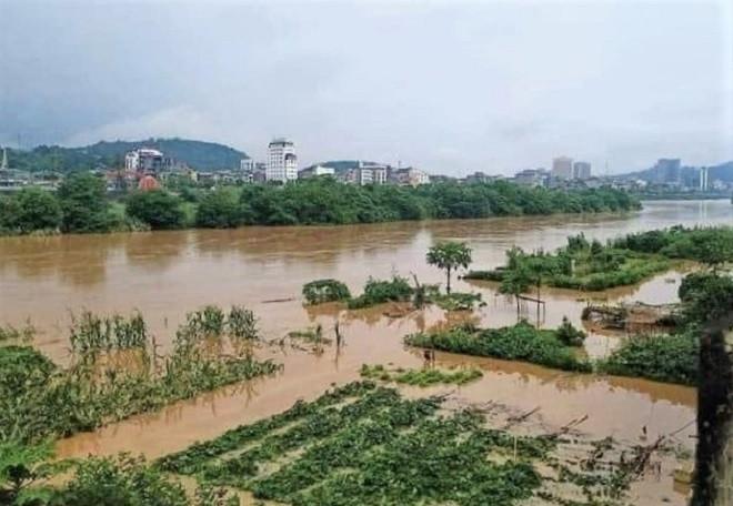 Lào Cai mưa lớn, ô tô chết máy, xe máy ngập gần tới yên - 11