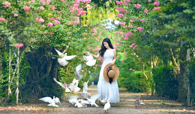 Mê mẩn đường hoa tường vi, đẹp tựa vườn thượng uyển ở trời Âu - 3