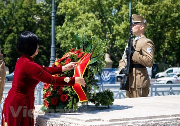 Tong thong Hungary chuc mung thanh tuu phat trien cua Viet Nam hinh anh 2