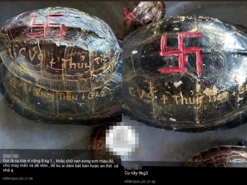 Mẹ Thủy Tiên gây phẫn nộ khi khoe mai rùa khắc tên vợ chồng con gái-4