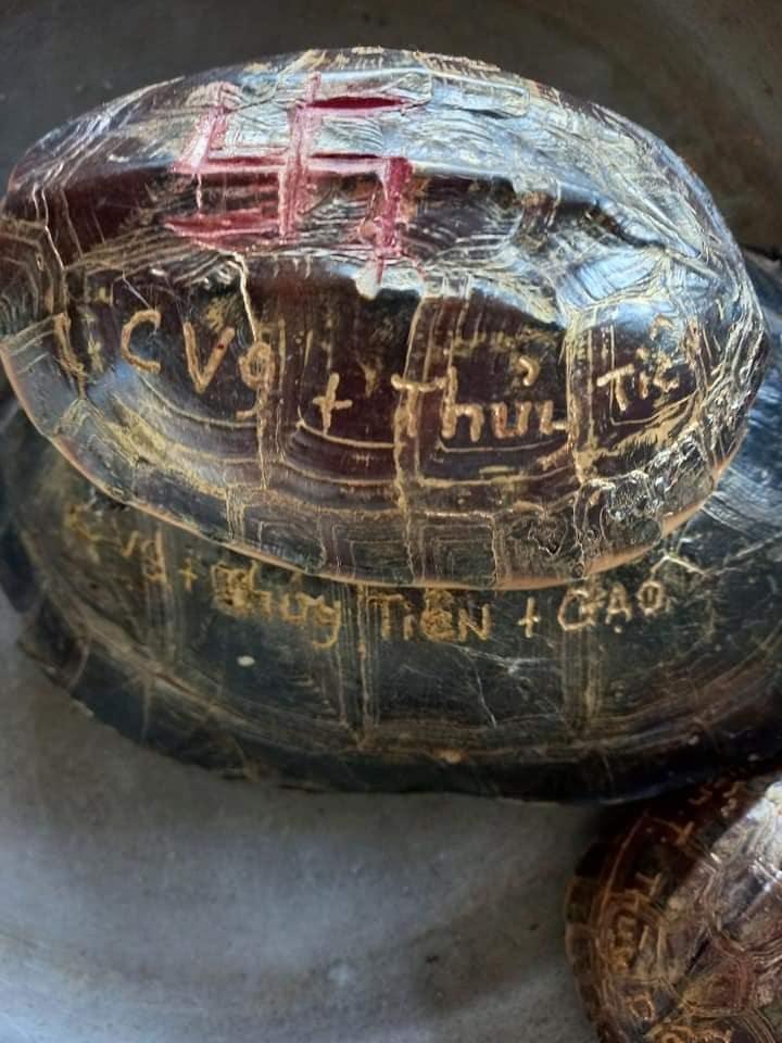 Mẹ Thủy Tiên gây phẫn nộ khi khoe mai rùa khắc tên vợ chồng con gái-5