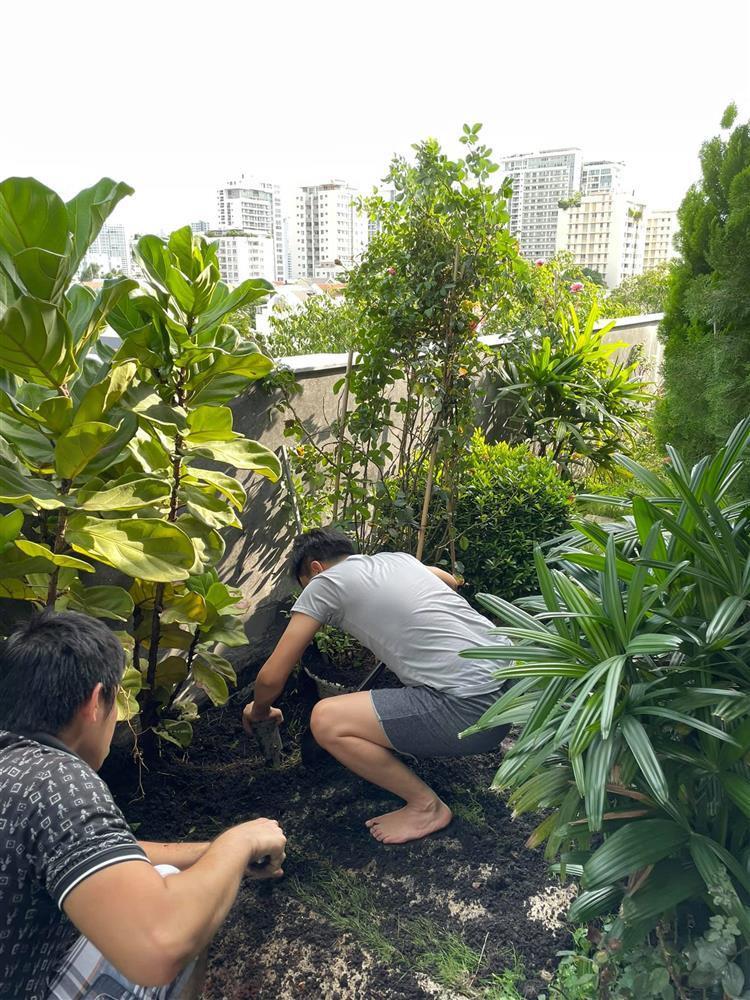 Đã mắt ngắm khu vườn sân thượng của Cường Đô La-3