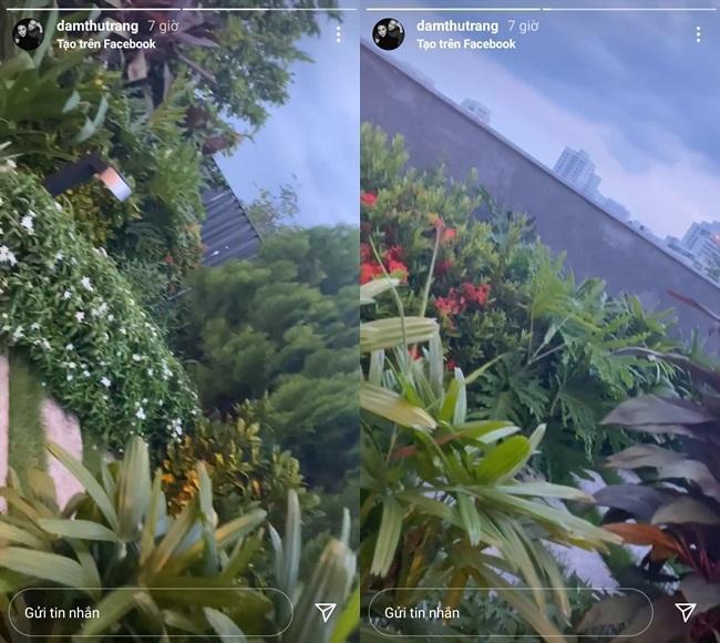 Đã mắt ngắm khu vườn sân thượng của Cường Đô La-8
