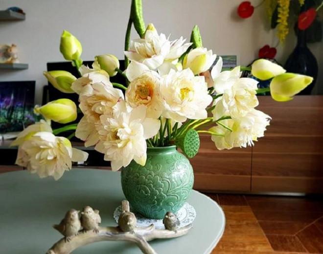 Mẹo dưỡng và chăm sóc hoa tươi lâu, bền màu - 1