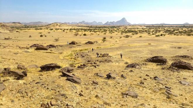 Hàng ngàn mộ cổ xếp thành bản đồ thiên hà hiện ra giữa sa mạc - Ảnh 1.