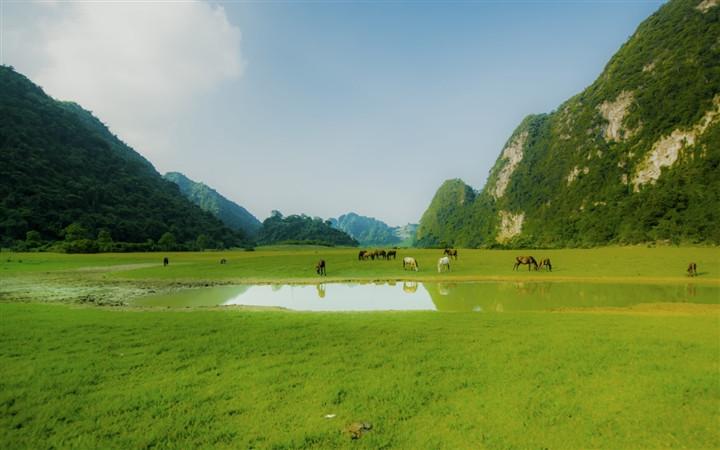 Gần Hà Nội có một thảo nguyên đổi cảnh theo mùa, xách ba lô đi ngay khi hết dịch - 2