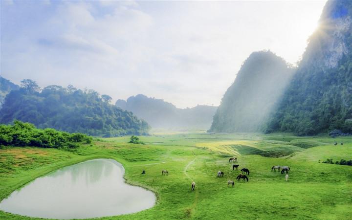 Gần Hà Nội có một thảo nguyên đổi cảnh theo mùa, xách ba lô đi ngay khi hết dịch - 5