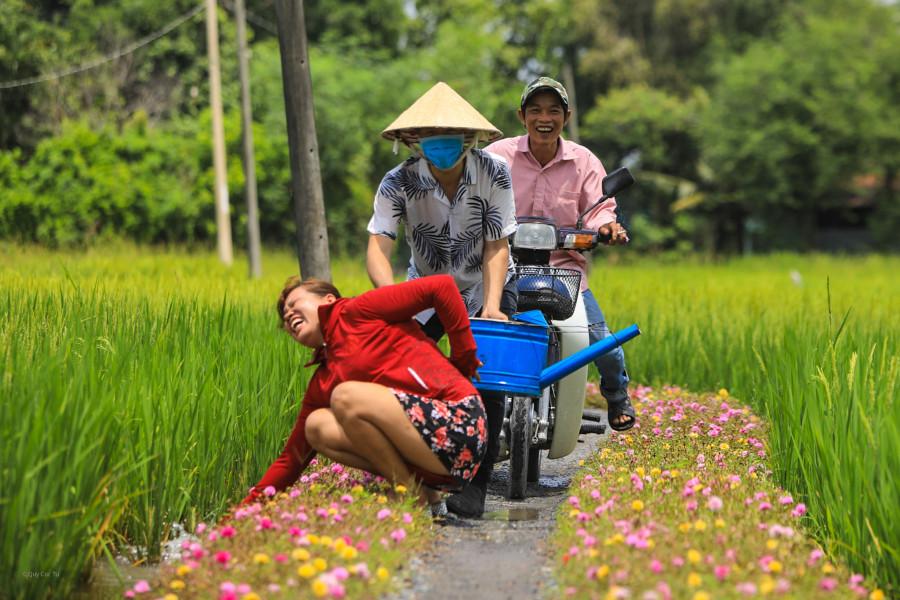 Con đường hoa mười giờ ở vùng ngoại ô Sài Gòn - 7