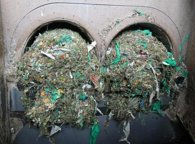 Ô nhiễm nhựa toàn cầu đang tiến đến điểm giới hạn không thể cứu vãn ảnh 2