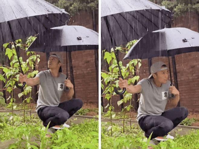 Tạ Đình Phong bị chỉ trích vì lấy ô che mưa cho rau-1