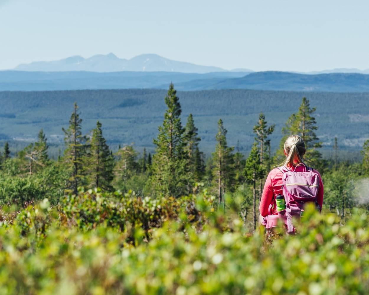 Quyền đi được đi đây đó: tình yêu thiên nhiên của con người Thụy Điển - 4
