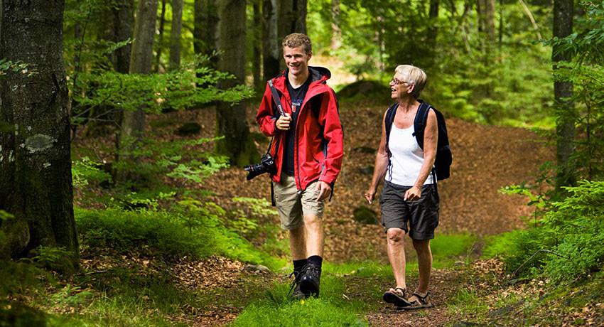 Quyền đi được đi đây đó: tình yêu thiên nhiên của con người Thụy Điển - 5