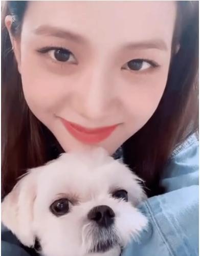 Số hưởng như cún cưng của Jisoo: 3 lãnh đạo Dior gửi quà sinh nhật gần 80 triệu-5