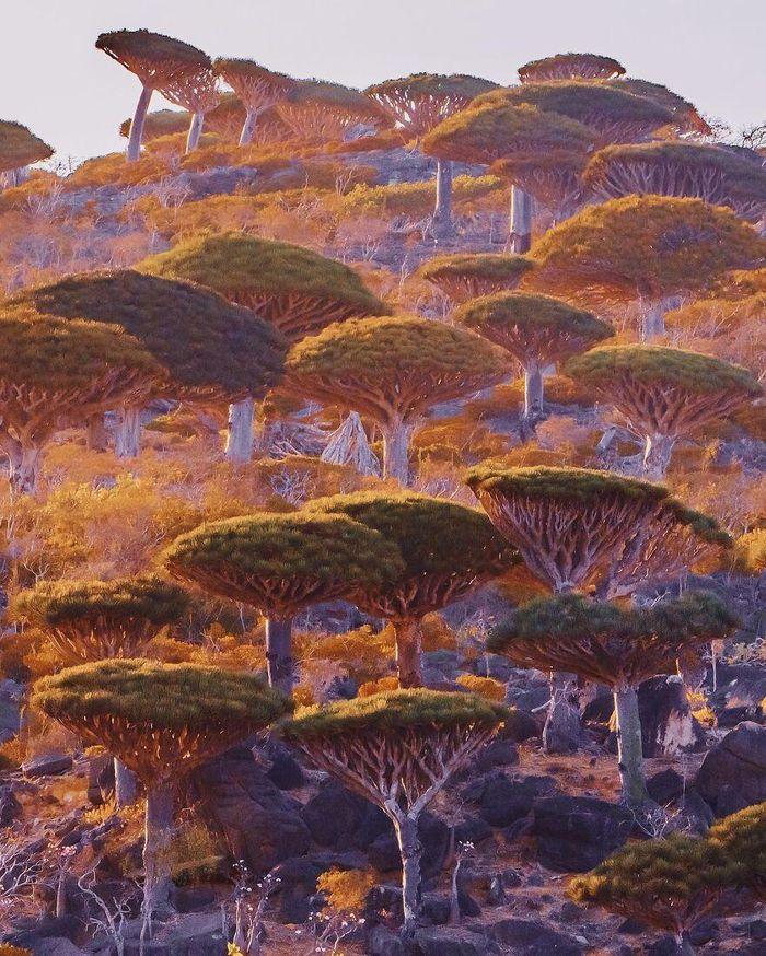 Ngắm nhìn hòn đảo như quang cảnh của hành tinh viễn tưởng - 5