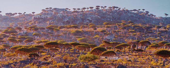 Ngắm nhìn hòn đảo như quang cảnh của hành tinh viễn tưởng - 3