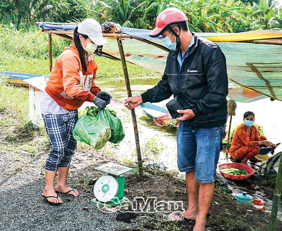 Rộn rã thu hoạch sản vật mùa mưa - 2