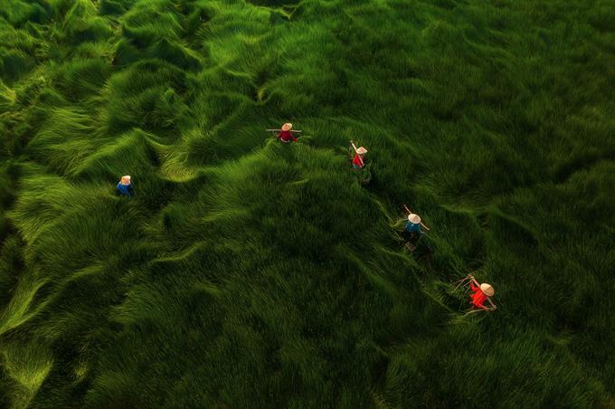 Ngắm bộ ảnh 'Việt Nam nhìn từ trên cao' đạt bằng Danh dự cuộc thi ảnh thường niên FIAP - 4