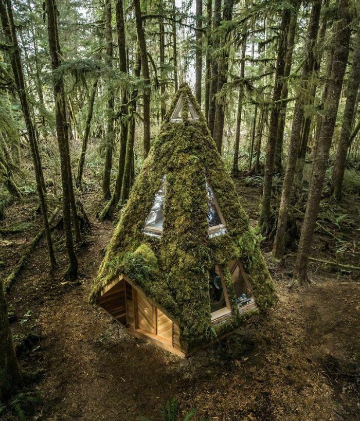 Mê mẩn những căn nhà gỗ nhỏ xinh ẩn mình giữa thiên nhiên - 15