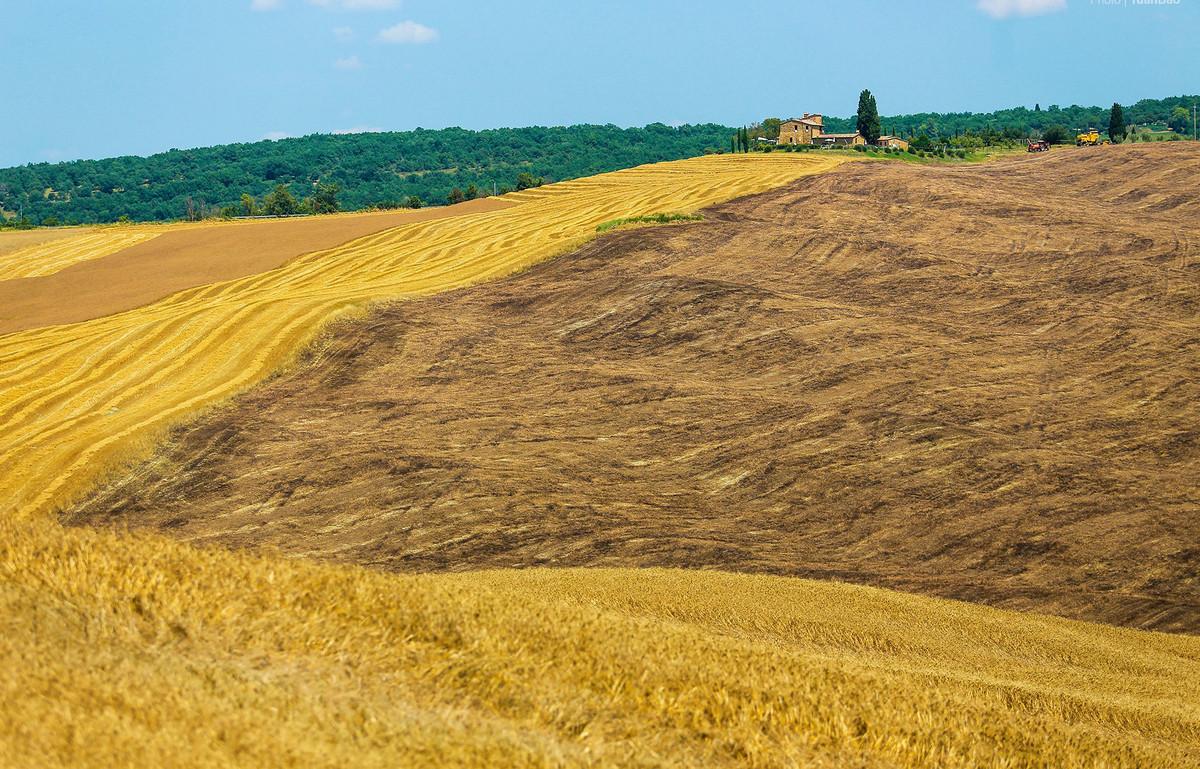Tuscany - vùng đất làm say lòng bao du khách - 1