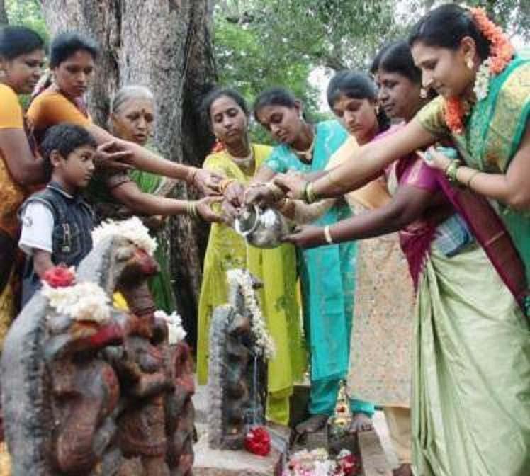 Ấn Độ: Du khách sởn da gà với lễ hội tôn thờ rắn - 2