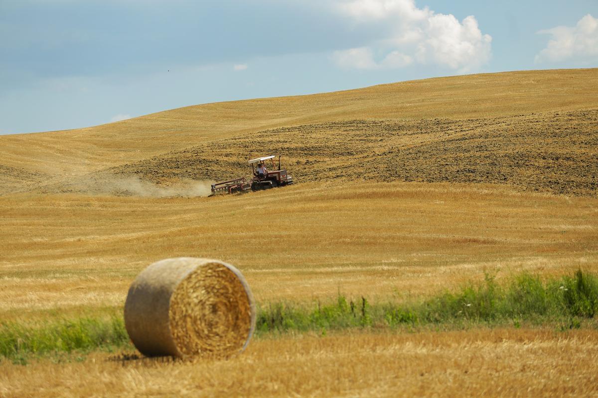 Tuscany - vùng đất làm say lòng bao du khách - 4