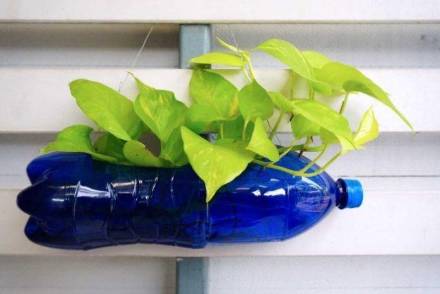 5 sự thay thế tại nhà giúp bạn giảm sử dụng nhựa để bảo vệ môi trường-9