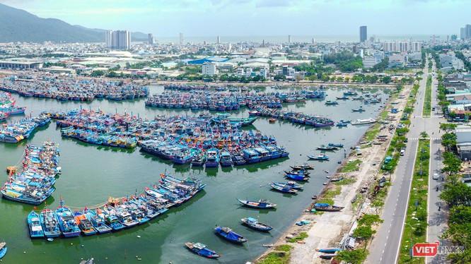 Cảng cá Thọ Quang (Đà Nẵng) nhìn từ trên cao (ảnh Nguyễn Trình)