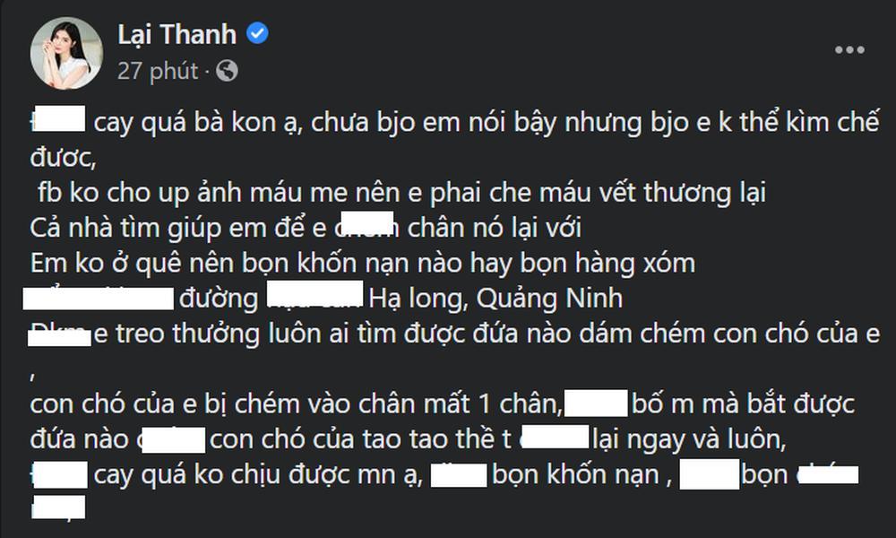 Chó cưng của Thanh Bi bị kẻ giấu mặt chém mất 1 chân-1