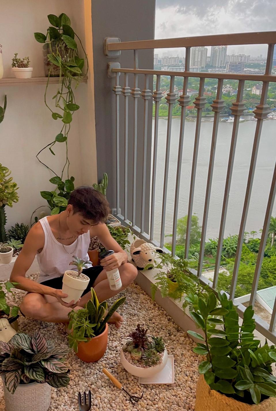 Sài Gòn trồng cây, hẹn gặp nhau khi hoa nở - 3