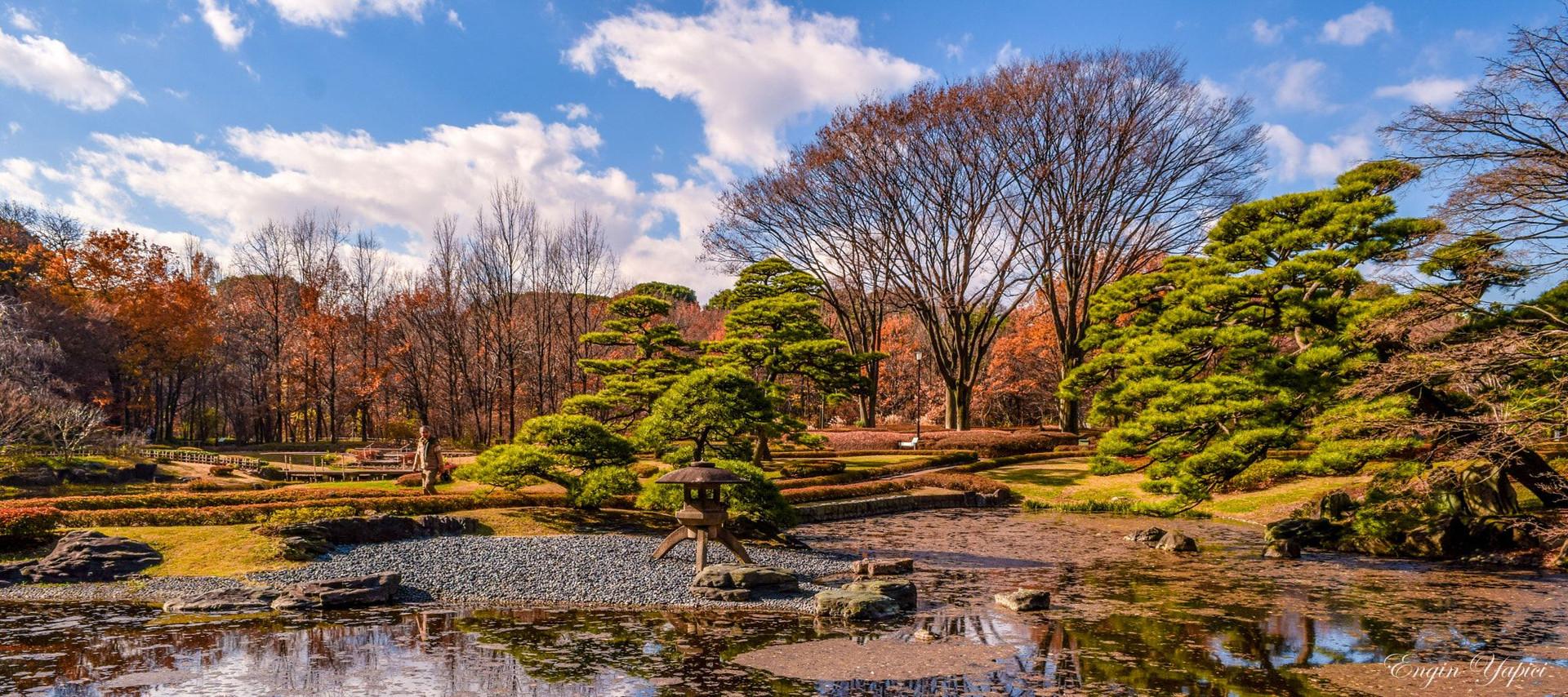 10 điểm tham quan hàng đầu ở Tokyo - thành phố tổ chức Olympic - 6