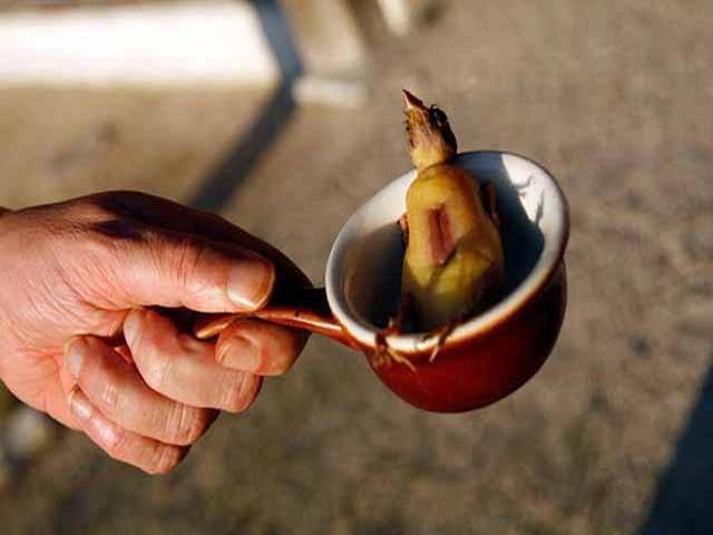 Rợn tóc gáy những món ăn mang danh tinh túy ẩm thực nước Pháp-13