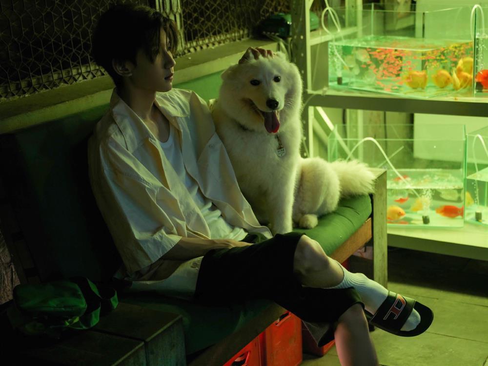 Vương Nguyên TFBOYS tung album mới cùng màu tóc nhìn mê chữ ê kéo dài-2