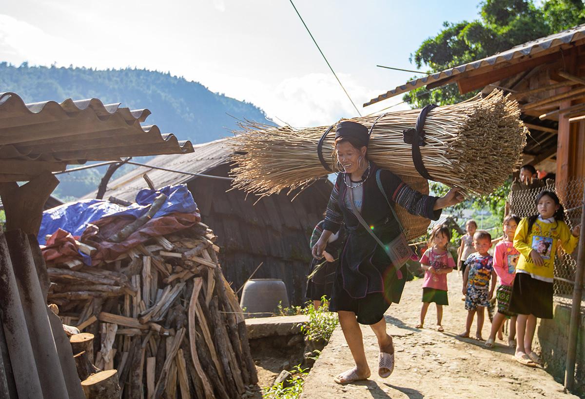 Người Mông Sa Pa vào mùa thu hoạch cây lanh, dệt vải - 1