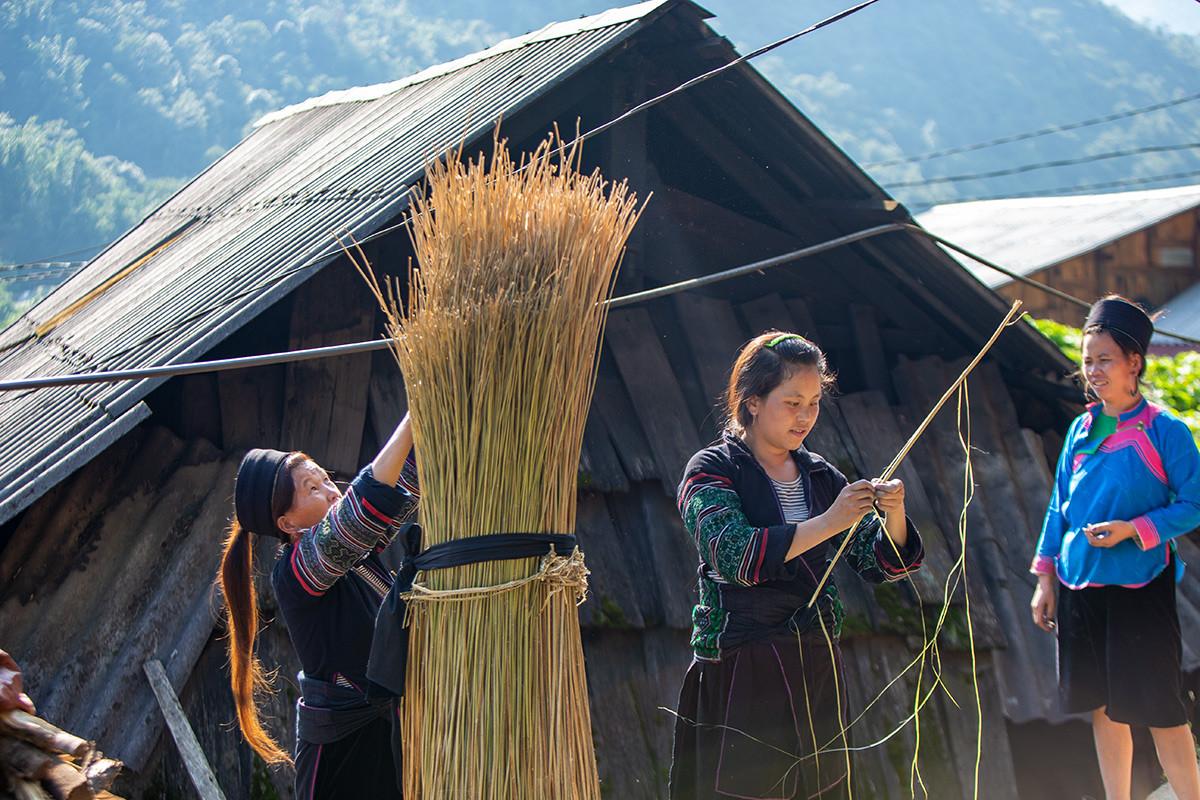 Người Mông Sa Pa vào mùa thu hoạch cây lanh, dệt vải - 3