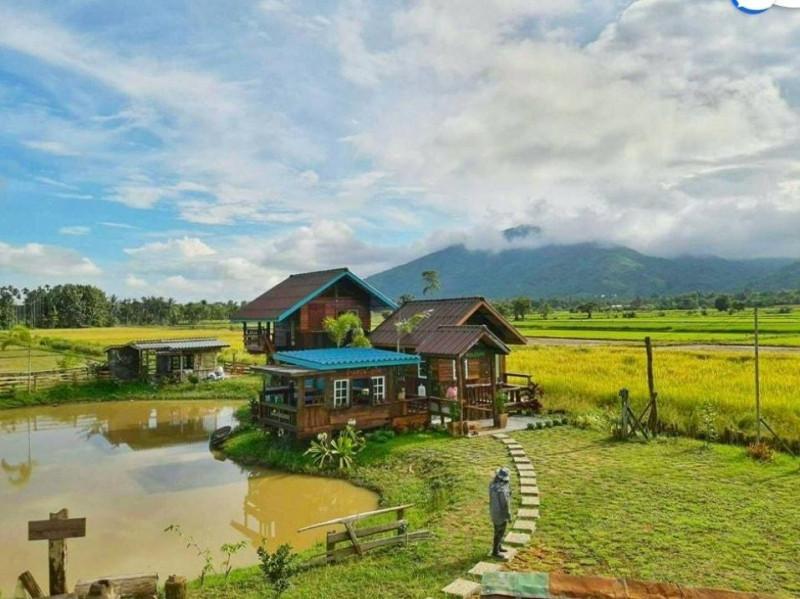 fram-stay-thai-lan