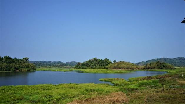4 khu rừng sát bên Sài Gòn cho team thích ở ẩn, hết dịch đi ngay - 7