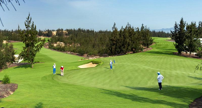 Sân golf FLC Quy Nhơn (Ảnh minh hoạ)