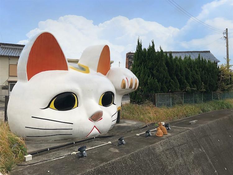 Maneki-neko: Bí ẩn chú mèo thần tài đến từ Nhật Bản - 10
