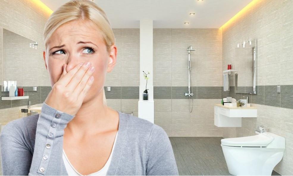 Mẹo khử mùi hôi nhà vệ sinh đơn giản đảm bảo hiệu quả, nhanh chóng-1