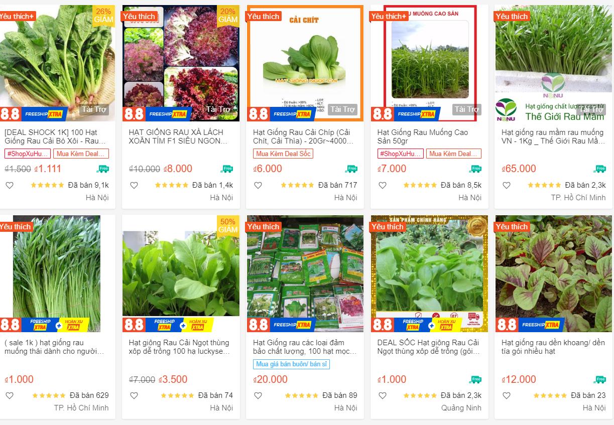 Cửa hàng bán hạt giống rau ăn nên làm ra, phát tài trong mùa dịch - 4
