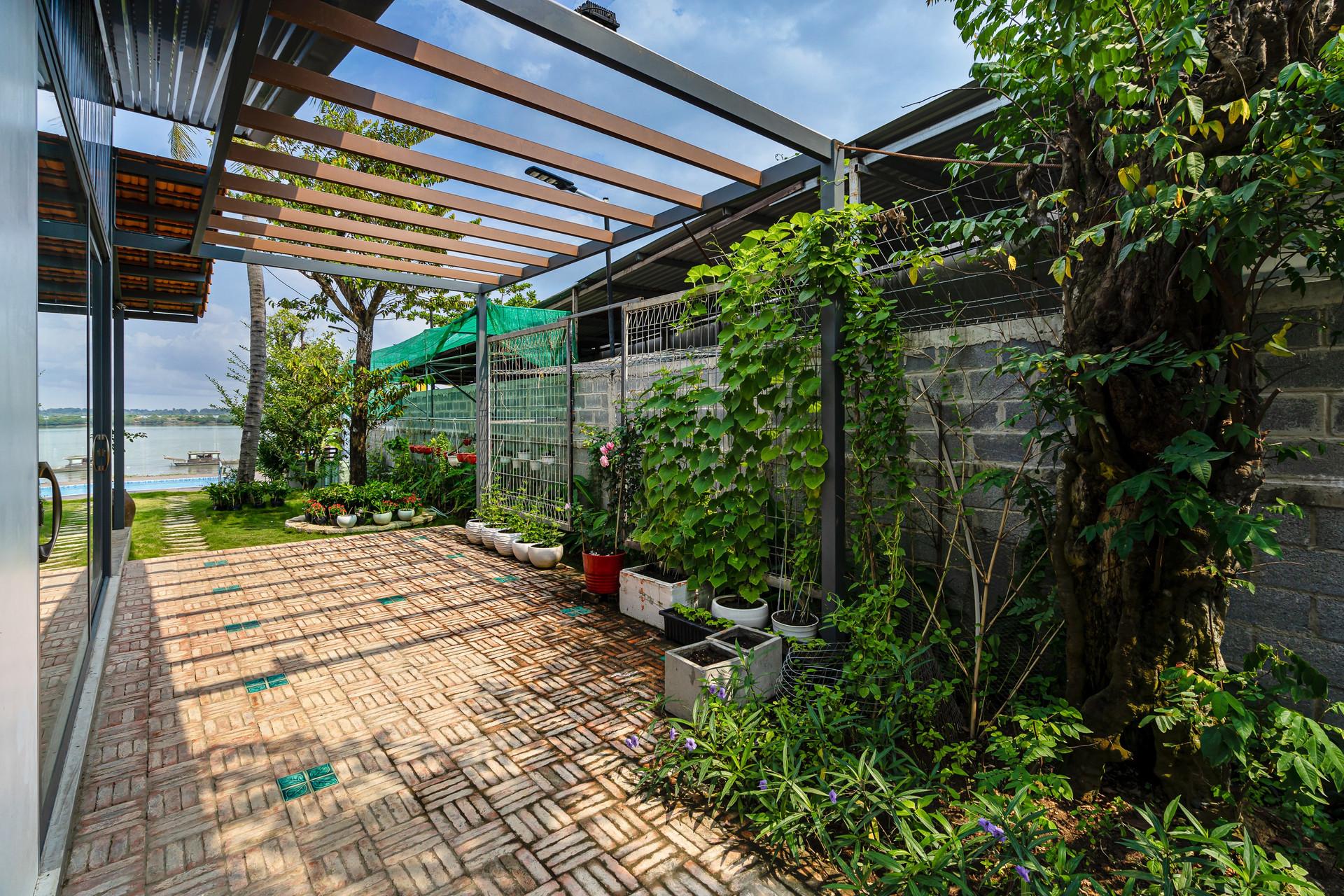 Xây nhà vườn có bể bơi né dịch, chàng trai tự thiết kế rẻ và đẹp lung linh - 6