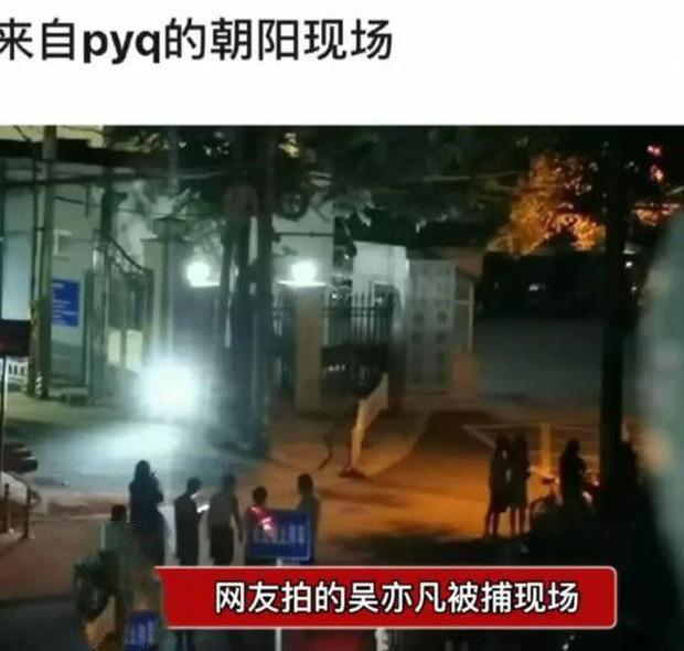 Xôn xao clip hiện trường Ngô Diệc Phàm bị bắt giữ tại nhà riêng-2